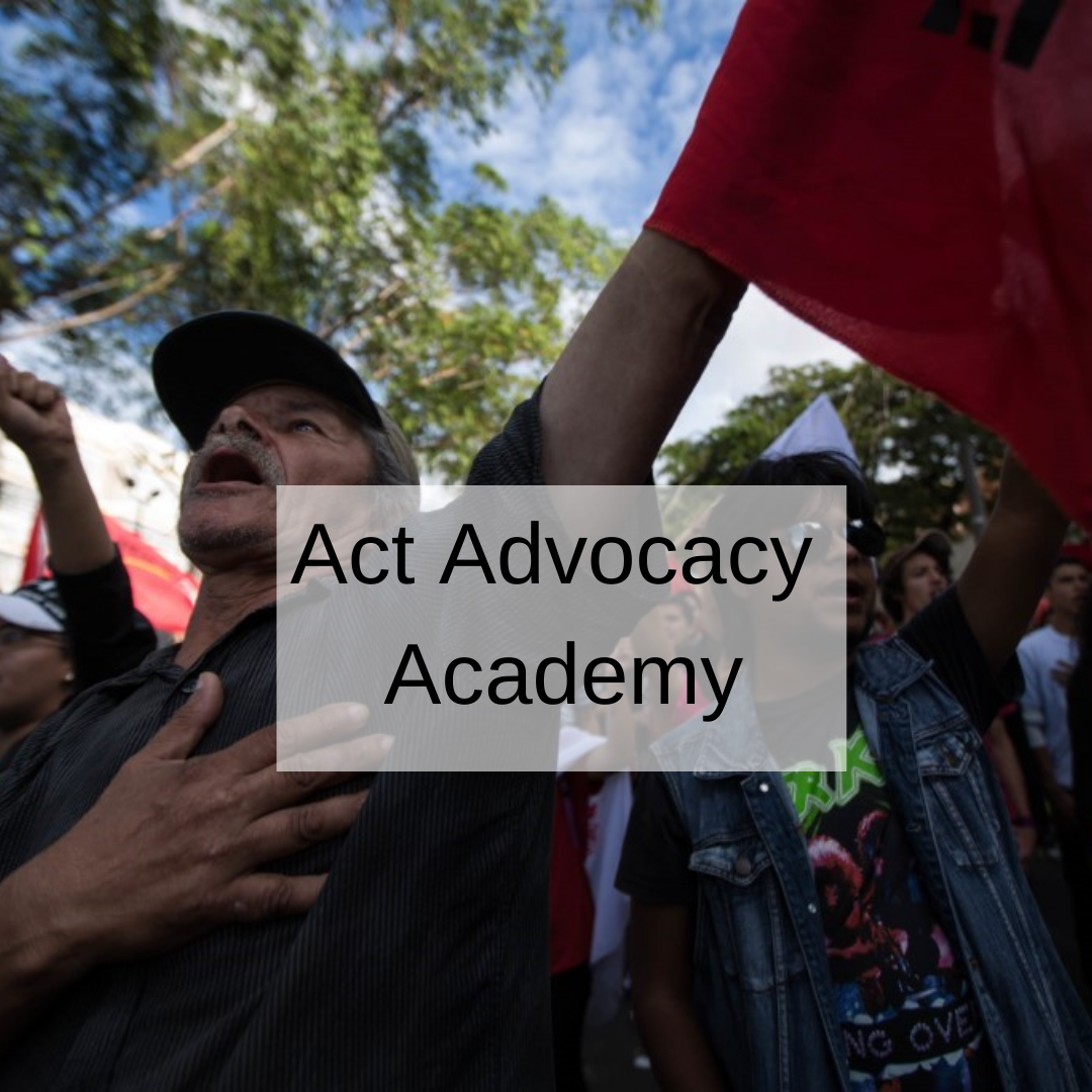 link to act advocacy academy